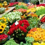 3 Profitable Niches for a Flower Farming Business
