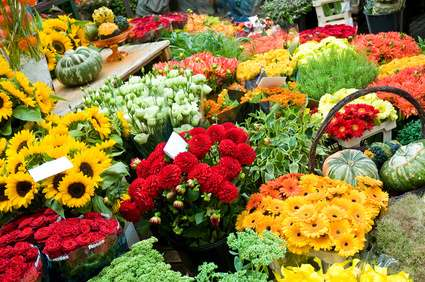 Earn Extra Cash Growing Flowers For Profit In Your