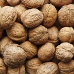 Growing for Profit With Walnuts