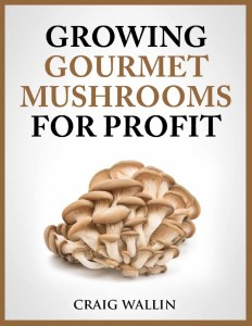Growing exotic mushrooms for profit profitable plants - Growing oyster mushrooms profit ...