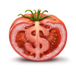 profitable heirloom tomatoes