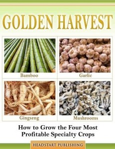 GoldenHarvest2dcover_opt