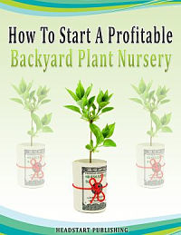 how to start a profitable backyard plant nursery
