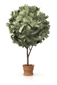 Growing Plants For Profit