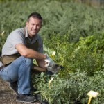 How to Make $36,000 Yearly Growing Profitable Herbs