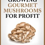 How to Make $60,000 Yearly Growing Gourmet Mushrooms