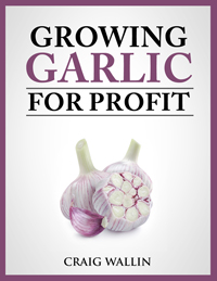 Profitable Garlic