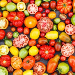 profitable heirloom tomatoes