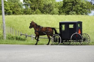 Amish buggy-opt